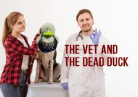 The Vet And The Dead Duck