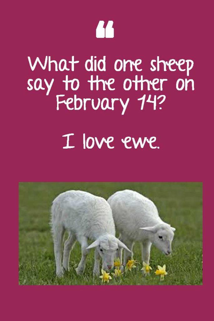Valentine's Memes
